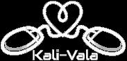 Kali-Vala.si IT storitve